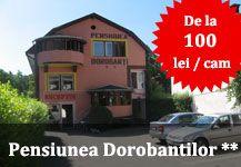 Cazare Pensiunea Dorobantilor - Centru Cluj Napoca