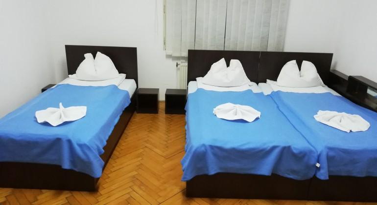 Pensiunea Leone Cluj-Napoca