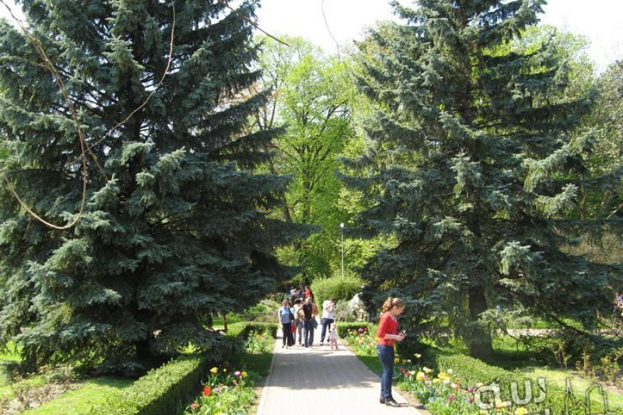 Gradina Botanica Cluj Napoca