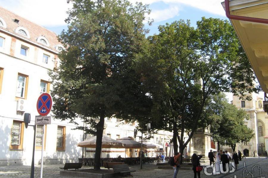 Piata Muzeului - Cluj
